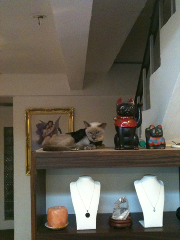 招き猫(=^ェ^=)